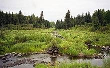 Riding Mountain National Park, Wasagaming (340304) (9444523796).jpg