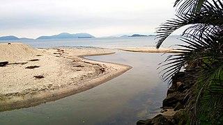 Rio-catumbi-estuary-1.jpg