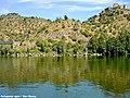Rio Tejo - Belver - Portugal (4987058963).jpg