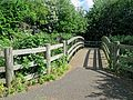 River Ching footpath 09, looking east over footbridge, South Chingford, London, England.jpg
