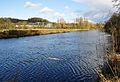River Dart by Snipe Island.jpg