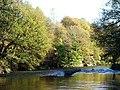 River Irwell - geograph.org.uk - 481513.jpg