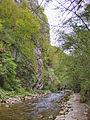 River Mali Rzav in the vlillage Visoka in Serbia - 7634.CR12.jpg