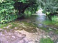 River Meon, Warnford - geograph.org.uk - 1330645.jpg