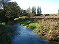 River Nar at Castle Acre 2 - geograph.org.uk - 589465.jpg