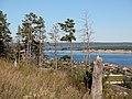 River view in Olyokminsk - panoramio.jpg