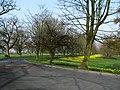Road, Barnett Demesne - geograph.org.uk - 1211981.jpg