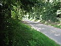 Road beside Lodge Plantation - geograph.org.uk - 515839.jpg