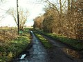 Road to Greenwood Farm - geograph.org.uk - 320278.jpg