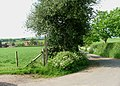 Road to Radwood Farm - geograph.org.uk - 447704.jpg