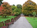 Roath Park in Autumn - geograph.org.uk - 1552176.jpg