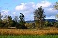 Robenhauser Riet 2012-10-13 17-08-00.JPG