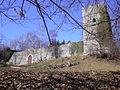 Rocca di Orino 02, foto di Carlo Dell'Orto.jpg