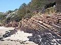 Rock Strata - geograph.org.uk - 420447.jpg