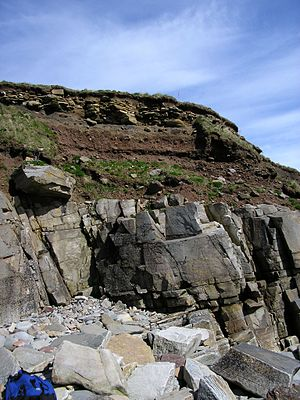 Bedrock - Soil with broken rock fragments overlying bedrock, Sandside Bay, Caithness