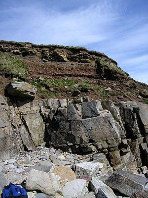 Bedrock - Soil with broken rock fragments overlying bedrock, Sandside Bay, Caithness