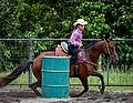 Rodeo in Panama 27.jpg