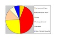 Rolette Co ND Pie Chart No Text Version.pdf