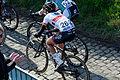 Ronde van Vlaanderen 2015 - Oude Kwaremont (16847401177).jpg