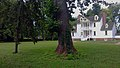 Rosedale Plantation House from lawn.jpg