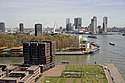 Rotterdam, Meuse river, seen from Lloydkwartier.jpg