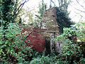Ruined house - geograph.org.uk - 582951.jpg