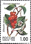 Russia stamp 1998 № 449.jpg
