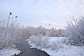 Russian winter (23979461690).jpg