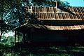 SC Ray Ashland Farm 1971 07.jpg