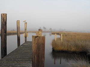 Swan Quarter, North Carolina - Swan Quarter dock