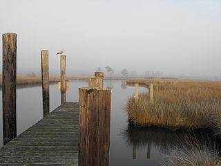 Swan Quarter, North Carolina Census-designated place in North Carolina, United States