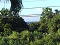 Saint John, Antigua and Barbuda - panoramio - Kashif Ahmed.jpg