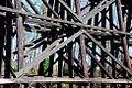 Salem Bridge Trestle (Polk County, Oregon scenic images) (polDA0033b).jpg