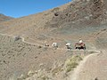 Salta Abra de Chaupiyaco - Las Capillas (14983170505).jpg