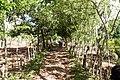 Samaná Province, Dominican Republic - panoramio (52).jpg