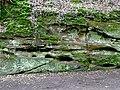 Sandstone by Tyrley Bottom Lock, Shropshire - geograph.org.uk - 1591085.jpg