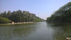 Sanjay Lake - Sanjay Lake in New Delhi, India
