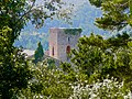 Sant Pere de la Portella entre els arbres.jpg