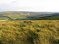 Saughtree Fell - geograph.org.uk - 521193.jpg