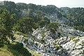 Schichttreppenkarst Jastrebica ridge on Mt Orjen, leg P.Cikovac.jpg
