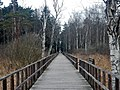 Schwäbische-Alb-Oberschwaben-Weg (HW 7) beim Federsee - panoramio (1).jpg