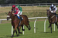 Scottish Racing Handicap 2924 (4923448553).jpg