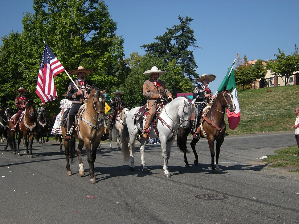 Seattle - Fiestas Patrias Parade 2008 - horses 04