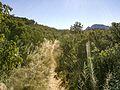 Secret Canyon Trail, Sedona, Arizona - panoramio (18).jpg