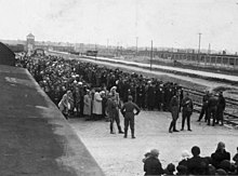 Birkenau, Poland, Selection on the platform.jpg