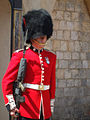 Sentry Duty, Windsor Castle - geograph.org.uk - 908766.jpg