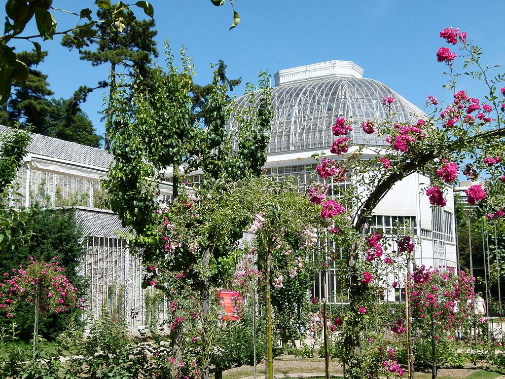File serres jardin albert wikimedia commons for Jardin albert kahn