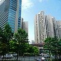 Shanghai Xujiahui Road 上海徐家匯路 - panoramio.jpg