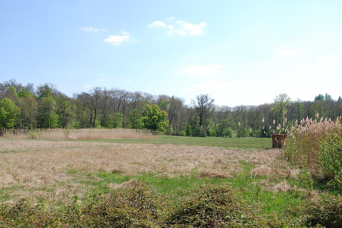 Silzwiesen Von Darmstadt Arheilgen Wikipedia