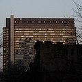 Skirball Institute, NYU Medical Center.jpg